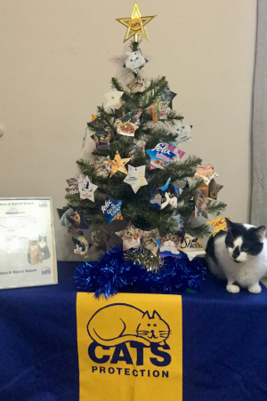 Salisbury Cats Protection